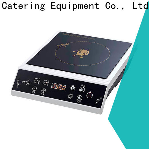 Earlston 220v commercial induction cooktop customized for kitchen