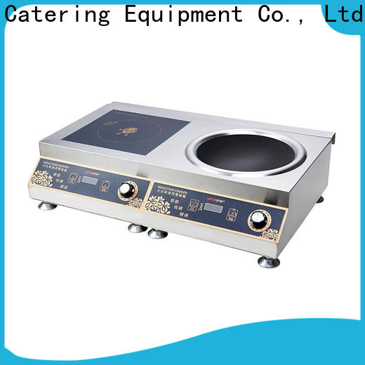 Earlston 220v buy induction stove customized for restaurant