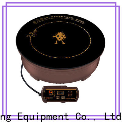 Earlston industrial drop-in induction cooker personalized for home