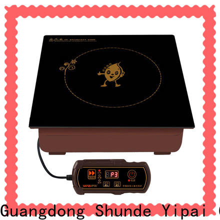Earlston countertop induction cooktop personalized for restaurant