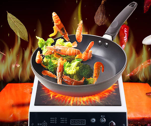 Earlston 220v commercial induction cooktop customized for kitchen-2