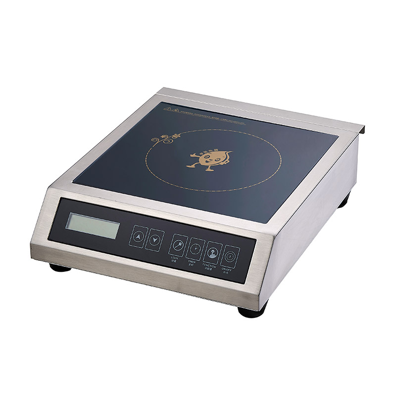 Earlston single induction stove from China for kitchen-5