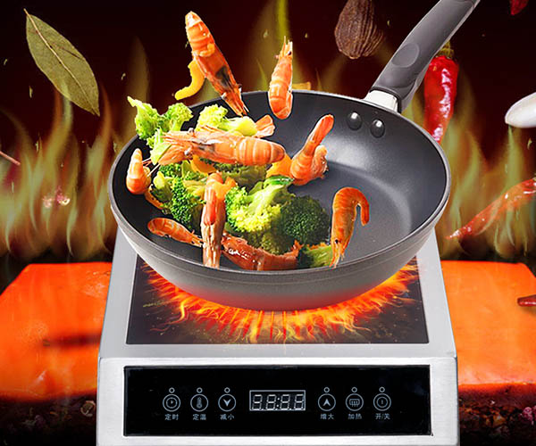 Earlston best induction cooktop from China for home-2