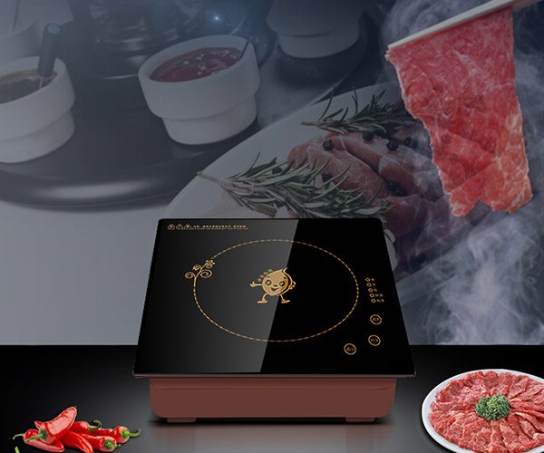 Earlston 220v commercial induction cooktop directly sale for restaurant-2