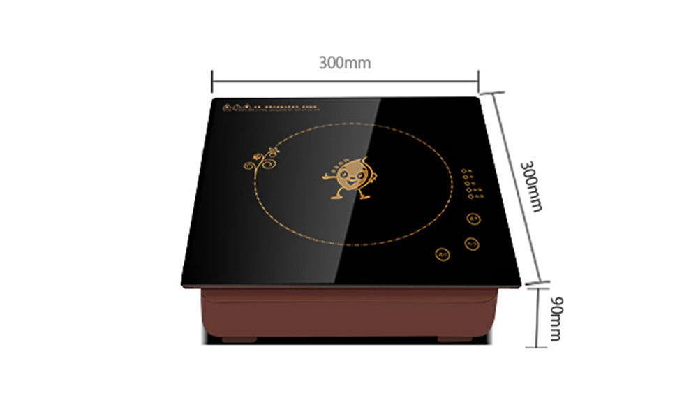 Earlston practical commercial induction cooktop customized for restaurant-1