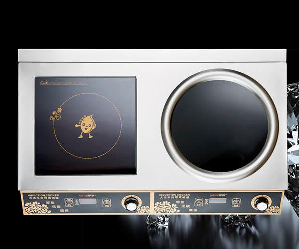 Earlston industrial electric induction cooker customized for kitchen-3