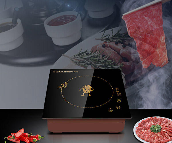 Earlston practical commercial induction cooktop customized for restaurant-2