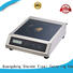 Earlston small induction cooktop directly sale for kitchen