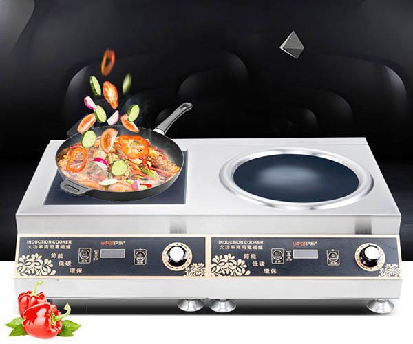 Earlston industrial electric induction cooker customized for kitchen-2