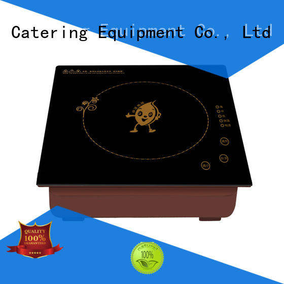 Earlston commercial induction cooktop from China for home
