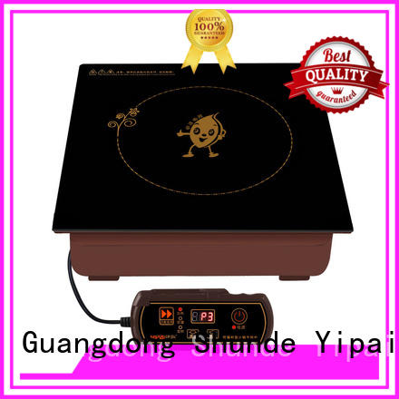 Earlston electric induction cooker customized for restaurant
