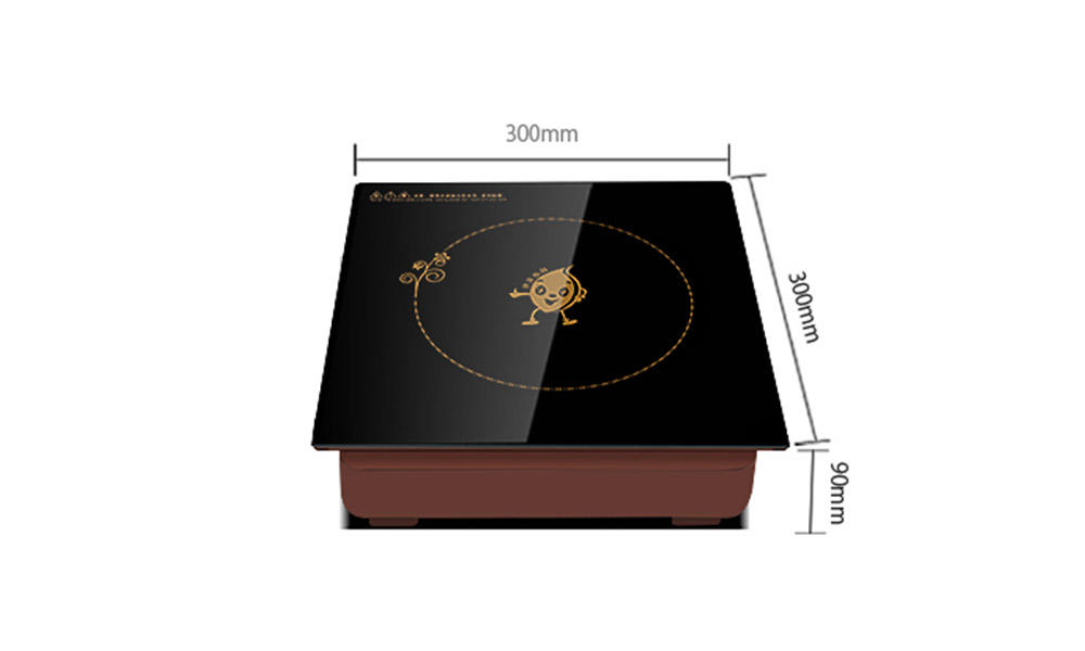 Earlston quality single induction cooktop from China for restaurant-1