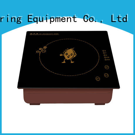 Earlston quality drop-in induction cooker personalized for kitchen
