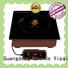 Earlston commercial induction cooktop directly sale for household